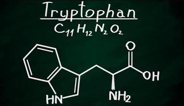 Que es el colágeno y el triptófano