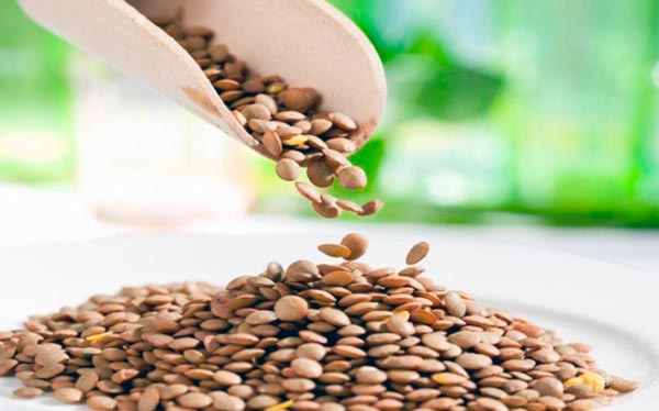 Alimentos Ricos En Hierro