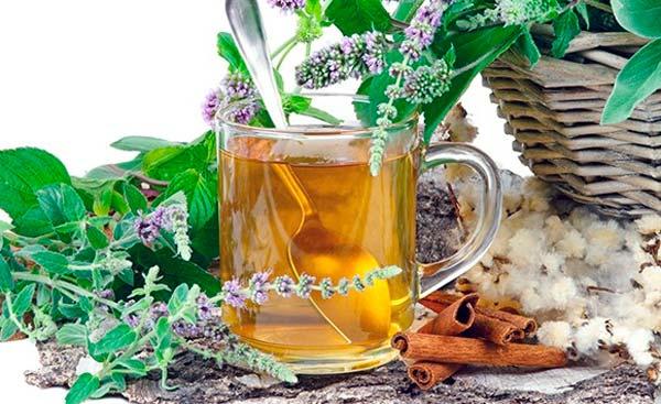 Beneficios De La Salvia Blanca