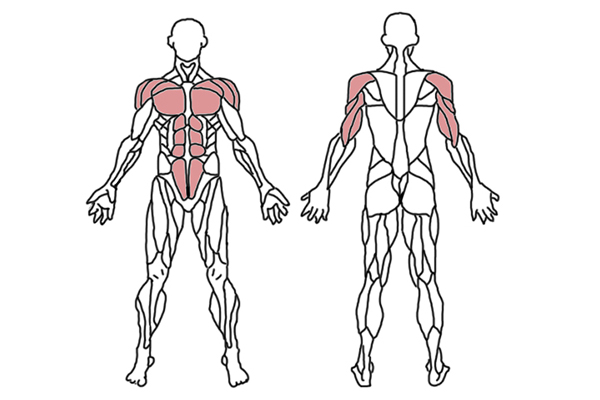 9 ejercicios básicos para transformar el cuerpo y quemar grasa. Son muchas las rutinas de ejercicios completamente efectivas para mantenernos en forma.